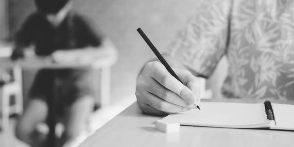 Poletni izpitni rok iz slovenščine na osnovni ravni je poln